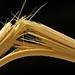 19th nervous breakdown (fizzybeth) Tags: splintered broken macro chopstick