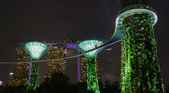 Supertree skywalk in Singapore (B℮n) Tags: marinabaysands singapore thomas raffles island trading port tourism holiday travel mrt train subway marina bay temples museum waterfront garden green city fullyautomated driverless nodriver vacation tourist exploring central metropole landmark chineseheritage food business commercial building unitedchinesebank rafflesplace mrtstation downtown core esplanade esplanadebridge leisurely marinabay skyline reflections thefloat rafflesavenue jetty enchanting happyplanet asiafavorites hotel gardensbythebay dragonflylake dragonflybridge fountain supertreegrove skywalk supertree park ocbcskywalk lightshow sounds 50metres gardens night 50faves topf50 100faves topf100