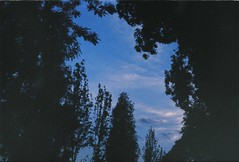 000057 (Ryanacc) Tags: film filmphotography pentax spotmatic streetphotography randomshot