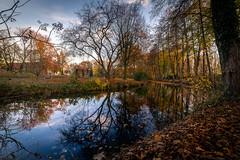 ~ Flowing ~ (andreasmally) Tags: fürstenau herbst autumn schloss schlossteich schlosspark castle pond wasser water
