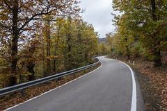Vallombrosa (HSlights) Tags: vallombrosa firenze toscana autunno stada bestimagesofitaly