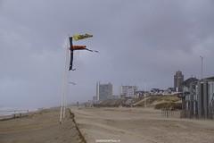 DSC02826 (ZANDVOORTfoto.nl) Tags: zandvoort edwin keur fotografie aan zee strand nederland netherlands kust coast shore beach beachlife strom stormy weather stormyweather wind hardwind sandstorm