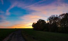 Abendhimmel (berndtolksdorf1) Tags: deutschland thüringen natur landschaft landscape abendhimmel sky feld weg bäume outdoor