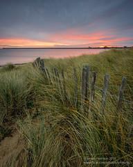 Little Haven (srhphoto) Tags: 2018 canon canonef1635mmf4lisusm canoneosr colour dawn grass haida haidafilters littlehaven southshields sunrise ©simonharrison2018