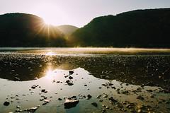 Der Rhein (Yuliya Bahr) Tags: rhein germany deutschland landscape river mountains sunrise sun sunlight yellow fog morning water stones sunflare lensflare reflection
