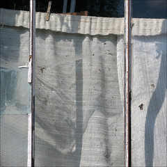 Closed (YIP2) Tags: old past vintage glass inside window abandoned outside abstract minimal decay lines remains simple detail minimalism texture surface barn line wall curtain square carre shadow
