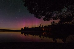 @algonquinoutfit : @lhammond29 @Some_Eventful Catch the right time and you can easily see Northern Lights in Algonquin Park. #WeGetOutside #NorthernLights. https://t.co/WujN1oZ4bR (AlgonquinOutfitters) Tags: ifttt twitter specific user photos