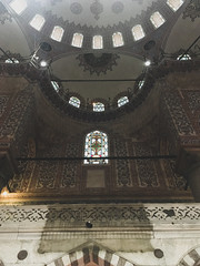 Dome of the Blue Mosque.jpg (Ketan Pandit) Tags: culture asia travel shoots photography iphone architecture history canon europe turkey istanbul cats palace sultan bosporous tourist pandits istiklal