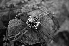 ROLEX 16600 (64patek) Tags: rolex rolex16600 seadweller sea dweller 4000 diver watch diverwatch blackandwhite nikon d800 35mm