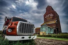 Warwick AWP Grain Truck (Stubble Jumper) Tags: albertawheatpool alberta wheatpool grainelevator elevator ford graintruck prairie