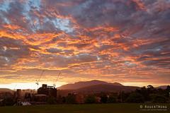 20190104-05-Hobart sunset (Roger T Wong) Tags: 2019 australia cemotaph domain hobart rogertwong sel24105g sony24105 sonya7iii sonyalpha7iii sonyfe24105mmf4goss sonyilce7m3 tasmania clouds sky sunset