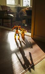 Menacing Shadows in the Morning (rocinante11) Tags: toys bumblebee transformers morning light shadow