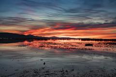 Serata spennellata (Cristiano Pelagracci) Tags: wind sunset tramonto paesaggio trasimeno lake water umbria color nature reflections