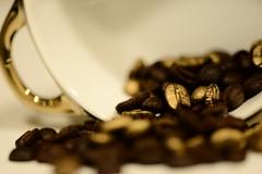Brew   Macro Mondays (giancarlo_darrigo) Tags: brew macromondays hmm nikon nikond800 bokeh