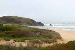 Tacking Point, Lighthouse Beach (Gillian Everett) Tags: tacking point lighthouse beach nsw australia 1879 flinders