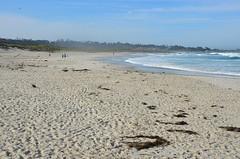 The sand at Asilomar (afagen) Tags: california pacificgrove asilomarstatebeach montereypeninsula asilomar beach pacificocean ocean