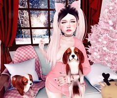 ♥♥♥ (ღ ღ[[J E SSIE ]] ღ ღ) Tags: fabia catwa cute dog scandalize maitreya secondlife sl secondlifeposes secondlifefashion secondlifeevents shinyshabby bloggingsl fashion