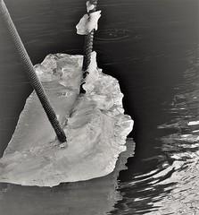4534 (www.ilkkajukarainen.fi) Tags: blackandwhite mustavalkoinen monochrome vesi water sea meri tukholma köysi ice jää is stockhom happy life visit travel travelling