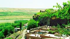 Diyarbakır (14 August 1993) 5
