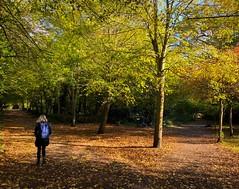 Holland Park #October2018 (cbascaran) Tags: october2018