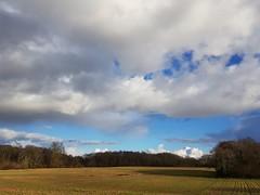 Beau ciel nuageux en Orthe et Arrigans (Marie-Hélène Cingal) Tags: cagnotte landes 40 ciel sky clouds nuages