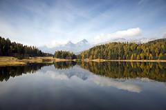 Super Symmetrie (Marcel Cavelti) Tags: symetrie lake grisons mirror autumn staz stazersee graubünden stmoritz forest trees cloud sky mountain mk35777bearb reflection serene