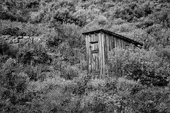 Outhouse in the  Sage (arbyreed) Tags: arbyreed monochrome bw blackandwhite kaibabbandofpaiuteindians outdoortoilet outhouse oldwoodenouthouse sage rabbitbrush pipespring arizona triballand indianland