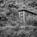 Outhouse in the  Sage