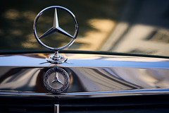 The star (iamunclefester) Tags: münchen munich street autumnstreetphotos autumn car mercedes mercedesbenz benz grille star chrome toned varnish paint polished polishedchrome old reflection