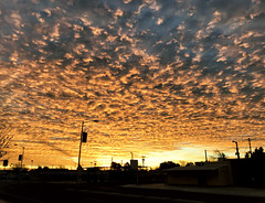 Fire Skies Can't Wait (northern_nights) Tags: firesky sunrise deming newmexico clouds altocumulus