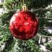 Christmas tree roundels