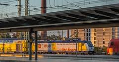 155_2018_10_11_Bremen_Hbf_6146_517_ME_schiebt_RE ➡️ Hamburg (ruhrpott.sprinter) Tags: ruhrpott sprinter deutschland germany allmangne nrw ruhrgebiet gelsenkirchen lokomotive locomotives eisenbahn railroad rail zug train reisezug passenger güter cargo freight fret bremen hbf 0440 1x16 1144 1265 6101 6145 6139 6140 6143 6146 6151 6152 6155 6182 6185 6187 6189 6193 7386 boxx ccw db eloc evb hctor hsl itl meg nwb öbb press radve rbh rpool graffiti