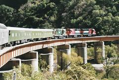MEX66 8242 8244 501 (stevenjeremy25) Tags: ferromex fxe fnm mexico train railway railroad pacifico chp chihuahua temoris gp382m 8242 8244 rs11 501