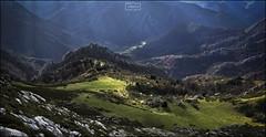 Bajando del Tiatordos (Jose Antonio. 62) Tags: spain españa asturias redes mountains montañas verde green naturaleza nature