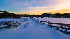 Sunset at the marsh of wolves (tods_photo) Tags: landscape sunset wolf marsh winter sun sky clouds fence colours
