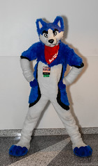 Super Wuff (SnapperGee) Tags: 2019 anthro anthropomorphic avwuff furry fursuit furtherconfusion husky blue confusion fursuiter further suiting cute adorable costume furcon