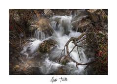 _ATP4582 (anahí tomillo) Tags: nikond7500 sigma1750f28 lightroom bosque forest naturaleza nature paisaje landscape agua water rio river rocas rock otoño autunm longeexposure largaexposición