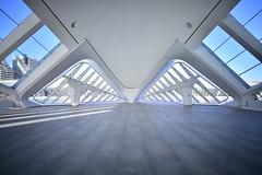 C.de las ciencias /Valencia (Jaime Vaello) Tags: nikon nikon7200 haidafilters haidand4000x polarizador polarizadorkf manfroto arquitectura ccdelasciencias valencia largaexposición longexposure jaimevaello