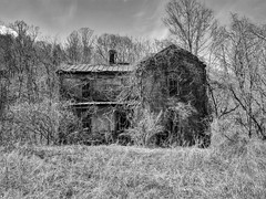 abandoned house on WV Rt. 50 near Grafton, WV (photography_isn't_terrorism) Tags: bw abandoned decayed farmhouse house overgrown