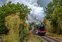6990 and 92214 (Peter Leigh50) Tags: steam great gcr gala central autumn railway railroad rural rail train trees autume fujifilm fuji xt2 locomotive transport track