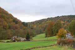 Hardcastle Crags (Halliwell_Michael ## Offline mostlyl ##) Tags: hebdenbridge hardcastlecrags westyorkshire nikond40x 2018 autumn autumncolour woodland woods trees landscapes