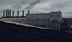 Городской пейзаж (olegkulishov) Tags: городскойпейзаж джунгли люди одиночество улица мёртвая натура