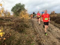 haarlerbergloop 10 km (49)