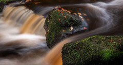 Padley Gorge (Peter Quinn1) Tags: padleygorge longexposure waterfall burbagebrook autumn water cascade leaves autumnalcolours moss le