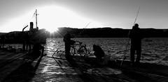 ÇANAKKALE BALIKÇILARI (uzaktanbakanadam) Tags: fishing fisherman landscape wb sunset hellespont port rod