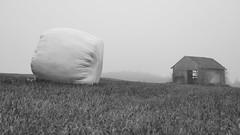 Für den Winter (flori schilcher) Tags: schilcher ballen silage hütte stadel nebel