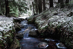 River flows in you (jonsthanbjork) Tags: water river rocks winter forrest snow canon nature naturephotography