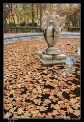 Fountain at Autumn (d.v.g) Tags: pond autumn spain leafs fountain aranjuez water fallenleafs colors park trees jardindelprincipe españa otoño