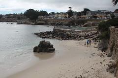 IMG_10927 (mudsharkalex) Tags: california pacificgrove pacificgroveca loverspointpark loverspointbeach beach