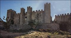 Castle of Obidos(Portugal) (williamwalton001) Tags: pentaxart historic hillside colourimage castle trees texture sky stone portugal tones